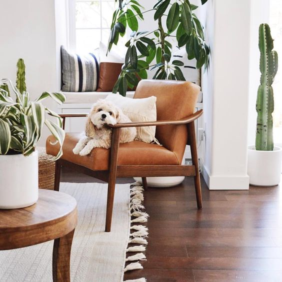 Pet-friendly floors